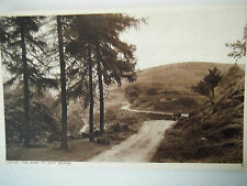 Buxton The Road To Goyt Bridge Old Postcard Photochrom Co