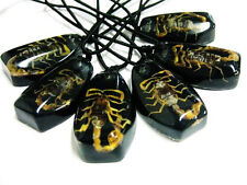 12pcs insect Real gold scorpion fashion scorpion Pendants black Necklace