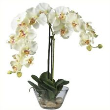 Nearly Natural Phalaenopsis with Glass Vase Silk Flower Arrangement in White