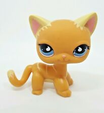Littlest Pet Shop Orange Cat Blue Eyes #790 525 Preowned LPS  6 Pictures!