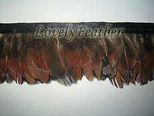 Ringneck Pheasant feathers fringe natural colour 2 yards trim