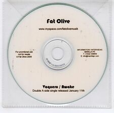 (GJ613) Fat Olive, Vaquero / Awake - 2009 DJ CD