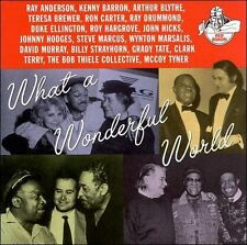 What a Wonderful World Various Artists MUSIC CD