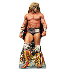 WWE Wrestling ULTIMATE WARRIOR Lifesize CARDBOARD CUTOUT Standup Standee Poster