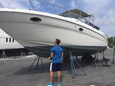 BOTH ENGINES AND OUTDRIVES COMPLETELY REBUILT!! - 2002 Sea Ray 290 Amberjack
