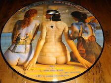 "PINK FLOYD RARE BEAUTIES PICTURE DISC 12"" SIZE FULL ALBUM"