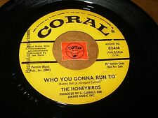 THE HONEYBIRDS - WHO YOU GONNA RUN TO - AIN'T   / LISTEN -  GIRL GROUP POPCORN