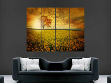 FIELD TREE SUNSET POSTER FLOWERS BEAUTIFUL WILD SKY  ART WALL LARGE
