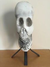 White Stone Skull Sculpture Carved On Vintage Stand
