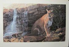 Ron Parker Last Light Cougar  # 21/650 ($600 Value) MINT W/CERT (1993) RARE