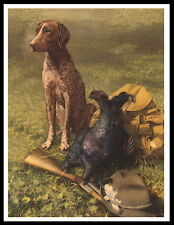 GERMAN SHORTHAIRED POINTER DOG AND GUN GREAT VINTAGE STYLE DOG PRINT POSTER