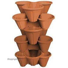 6 X Strawberry Planter Trio Plastic Pot Stacking Herb Bed Garden BROWN TopChoice