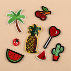 8Pcs Embroidery Cactus Fruit Sew Iron On Patch Badge Bag Clothes Fabric Applique