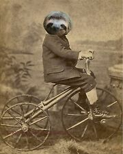Sloth Bike Art Print 8 x 10 - Altered Art - Victorian Riding Bicycle - Surreal