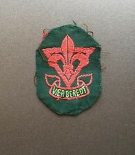 Vintage Dutch Boy Scout membership badge / Netherlands Scouts patch Holland