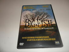 DVD  Big Fish