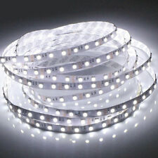 2835 CHIP Based LED strip light with power supply - 5m rolls - White color