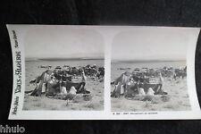 STA587 Algérie campement de nomades Photo Stereo stereoview Afrique du Nord