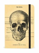 Cavallini - Small Lined Pocket Notebook 4x6ins - The Skull - 256 Pages
