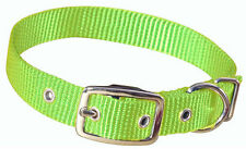 Hagen Dogit Nylon Dog Collar with Buckle - Green - Large - Sale Benefits Rescue