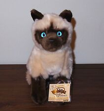 Webkinz Signature Siamese Cat With Sealed Code Tag * Beautiful Blue Eyes