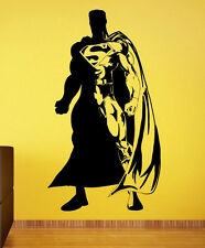 Superman Wall Decal Vinyl Sticker Comics Superhero Atr Home Wall Decor (011s)