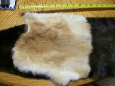 1 craft grade rabbit pelt/fur//Hides/native crafts/fly tying/cabin,western decor