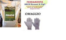 SEMI DI PRATO BLUMEN MISCUGLIO VERDE OASI