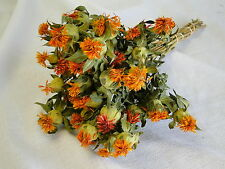 NATURAL DRIED ORANGE SAFFLOWER FLOWERS FLORAL FLOWER FOLIAGE