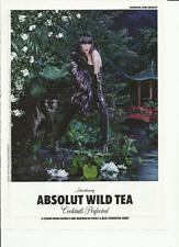 ABSOLUT WILD TEA - 2010 Absolut Vodka print ad