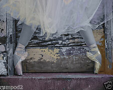 Vintage Photo/Poster/ Ballet Shoes/Slippers/16x20 inch