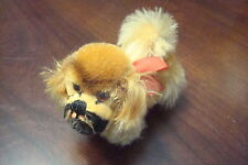 Small Steiff dog POKI mohair  with tag[*8]