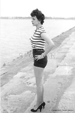 1940s-60s (4 x 6) BW Repro Semi Nude Pinup RP- Endowed- Shorts- Legs- Heels