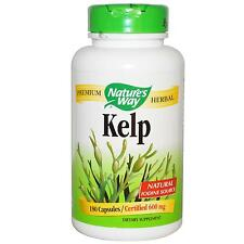 KELP - 180 - 600mcg Capsule-verde alga Superfood & iodio supplemento