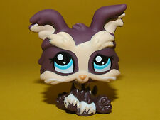 P2) Littlest Pet Shop LPS - Dog Shi Tzu Yorki Yorkshire Terrier #1473