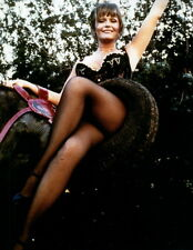 Valerie Perrine Leggy 8x10 photo P2879
