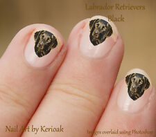 Black Labrador Retriever Portrait,  24 Dog Nail Art Stickers Decals