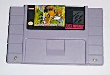 Record of Lodoss War - game For SNES Super Nintendo - RPG