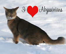 Abyssinian Cat Mouse Mat - I Love Abyssinians