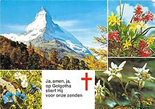 BG12271 matterhorn en alpenbloemen multi views    switzerland