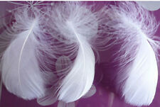 Wholesale 20-1000pcs natural goose feather 6-10cm /3-4inches DIY