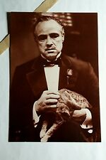 The GODFATHER HOLDING CAT B&W TUX MOVIE 4x6 PROMO POSTER FLYER POSTCARD