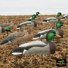 AVERY GREENHEAD GEAR GHG MALLARD HARVESTER 5/8 SHELL DUCK DECOYS DOZEN 12