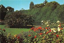 BT17821 crathes castle the uew hedges from the rose gardens  scotland