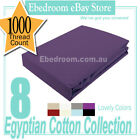 GRAPE PURPLE KING SINGLE Size 1000TC Egyptian Cotton Collection Fitted Sheet