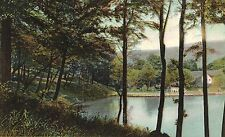 Chester,W.V.DOUBLE-WIDE POSTCARD,The Lake at Rock Springs,Hancock County,c.1909