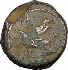 Antiochos VIII (Grypos) Seleukid Kingdom 121BC Ancient Greek Coin Eagle i48436