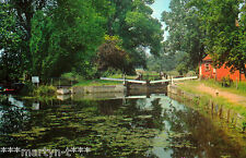 Postcard. VIEW FROM THE BRIDGE, HARLOW. Unused. Standard size.