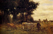 """Art Oil painting Grazing cattle cows in sunset landscape forest canvas 24""""x36"""""""