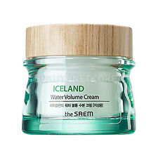 [the SAEM] Iceland Water Volume Cream (For Oily Skin) 80ml / 2016 New